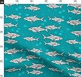 Hai, Wal, Zähne, Ozean, Meer, Gefahr, Der Weisse Hai