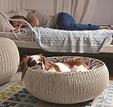 CURVER | Panier de couchage rond aspect Tricot avec coussin, Sable, 55 x 54 x 21 cm, Plastique