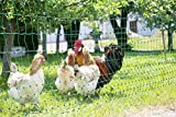 mobiler Garten-Elektrozaun grün 50m x 112cm + 14 Pfähle + Heringe (nur 5,9cm Maschenweite)