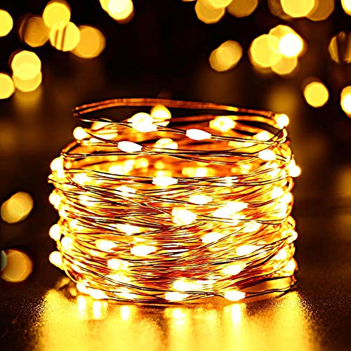 FULLBELL LED Fairy String Lights, Copper Wire Light 33 Feet 100 LEDs for Indoor and Outdoor Decoration USB Powered + 24 Key IR Remoter + Power Supply Charger