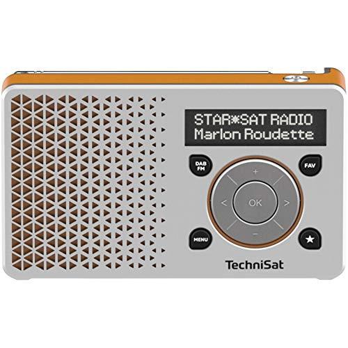 TechniSat DIGITRADIO 1 – tragbares DAB+ Radio mit Akku (DAB, UKW, FM, Lautsprecher, Kopfhörer-Anschluss, Favoritenspeicher, OLED-Display klein, 1 Watt RMS) silber/orange