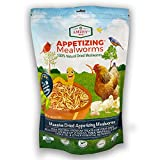 Dried Mealworms -2 LBS- 100% Natural Non GMO Mealworms -Food For Chicken- High Protein Mea...