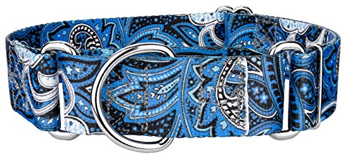 Country Brook Design 1 1/2 Inch Blue Paisley Martingale Dog Collar - Large