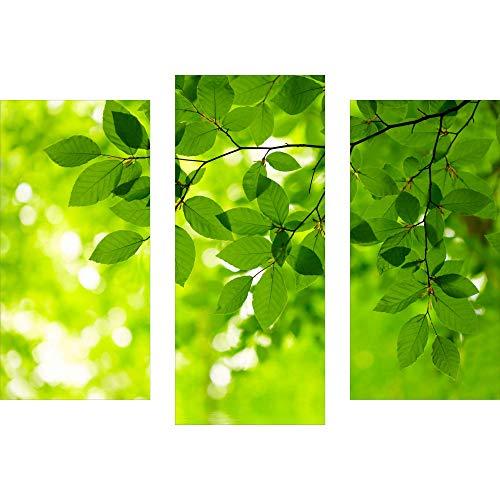 decorwelt | Dreiteiliges Wandbild 3 Teilig Acrylglasbilder Acryl Glasbild Natur Grün 90x70 cm Wandbilder Wohnzimmer Esszimmer Deko Wanddeko
