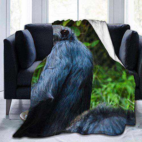 Cobija de franela de forro polar, ligera y acogedora, para sofá, para todas las estaciones, 127 x 102 cm
