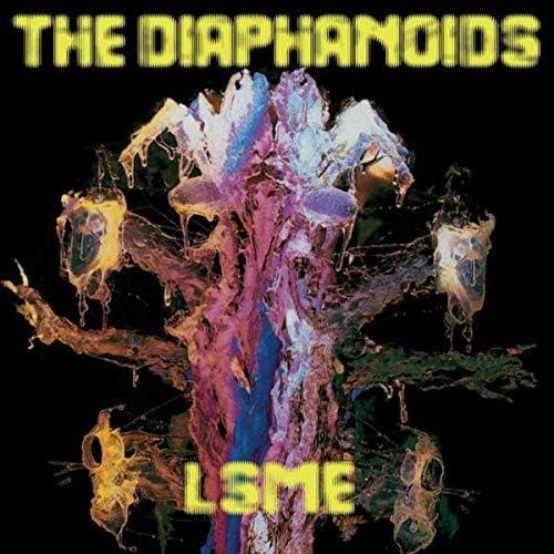 The Diaphanoids