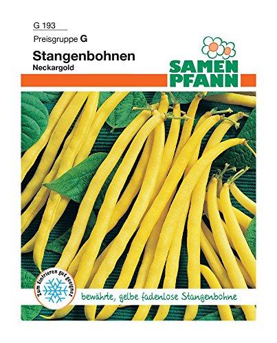 Samen Pfann G193 Stangenbohne Neckargold (Stangenbohnensamen)