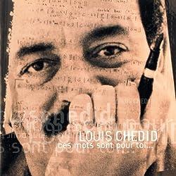 Ces Mots Sont Pour Toi 1992 by Louis Chedid (1998-01-14)