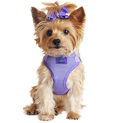 Doggie Design Wrap and Snap Choke Free Dog Harness - Paisley Purple (M)