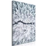 decomonkey Bilder Wald Winter 80x120 cm 1 Teilig Leinwandbilder Bild auf Leinwand Vlies Wandbild Kunstdruck Wanddeko Wand Wohnzimmer Wanddekoration Deko Natur Schnee