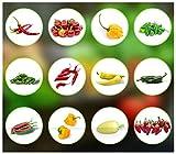 Chili Samen Set | 12 Varianten Chili Saatgut von scharf bis mild | Anzuchtset mit Chili Premium- Natursamen |einfache...