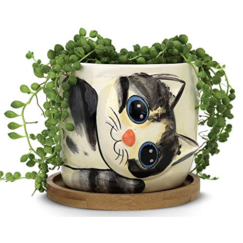 Window Garden – New Large Kitty Pot (Sebby) – Purrfect for Indoor Live House Plants, Like Succulents, Flowers and Herbs. Top Quality, Super Cute Planter Gift for Cat Lovers, Office, Christmas.