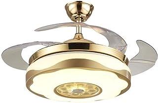 Ventilador de techo de oro Luz libre de la lámpara de techo retráctil de la hoja de control remoto de la sala dormitorio creativo de 42 pulgadas ventilador moderno de oro BZSM Luz (tamaño : 42 in)