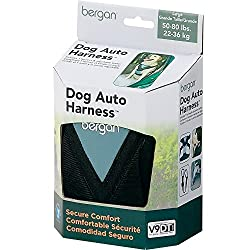 Best Safety Harness for Dogs in Cars - Bergan Dog Auto Harness