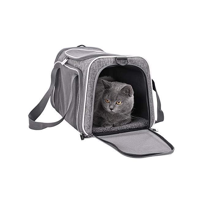 Cat Carrier