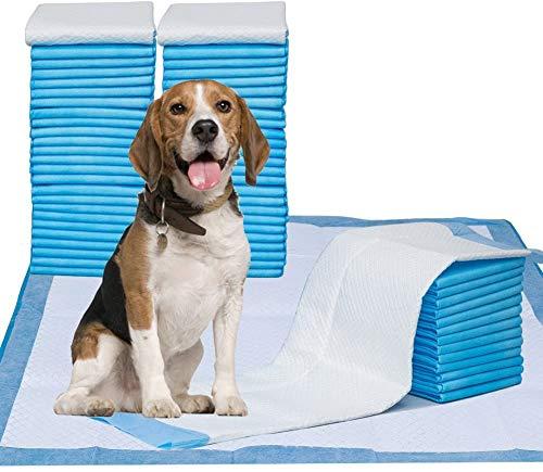 petphabet XXL Ultra saugfähig Trainingsunterlagen inkontinenzunterlage für Welpen Hund Hygieneunterlagen Puppy Training Pads 71x86cm