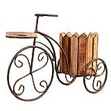 Tubayia Maceta de hierro para bicicleta, macetero para casa, balcón, oficina (color madera)