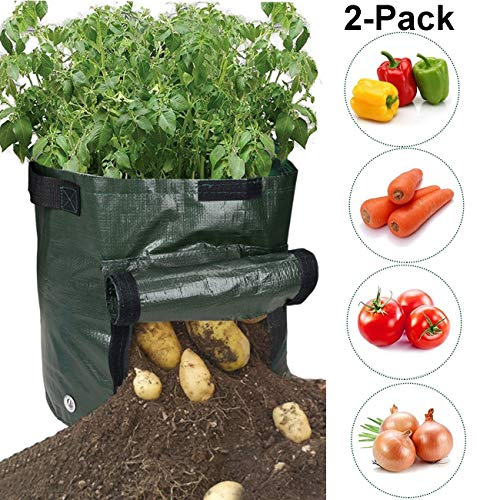 WINWINBD Potato Grow Bags, Durable 2 Pack 7 Gallon Potato Planter with Access Flap, Raised Garden Bed for Planting Vegetables, Taro, Radish, Carrots, Onions