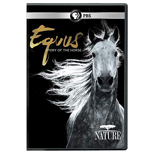 NATURE: Equus: Story of the Horse DVD