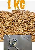 Mehlwürmer lebend 1000g mit Kühlpacks geliefert in Box mit Eierkarton | 1kg lebendige Mehlwürmer für Vögel | Wildvogelfutter Mehlwürmer Lebendfutter Reptilien | lebende Mehlwürmer kaufen Würmer lebend