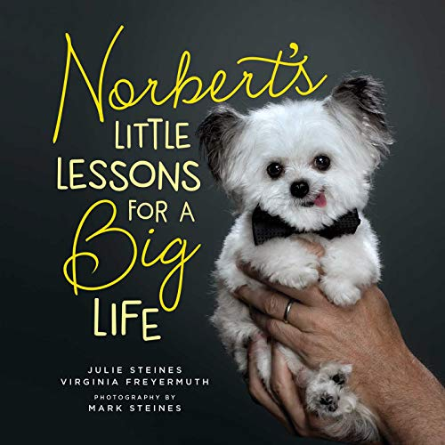 Norbert's Little Lessons for a Big Life (English Edition)