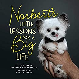 [Julie Steines, Virginia Freyermuth, Mark Steines]のNorbert's Little Lessons for a Big Life (English Edition)