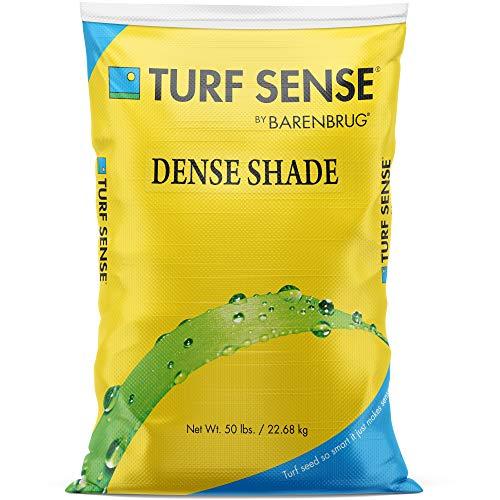 Barenbrug 25630 Turf Sense Grass Seed-Grows in Areas of Dense Shade, 50 LB Bag