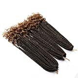 3Packs Eunice 16 Inch Curly Senegalese Twist Crochet Hair Bundles Wave Ends Braids Synthetic Braiding Hair Extensions for Black Women(16 inch, ombre brown)