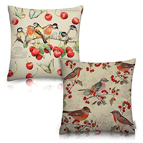 Juego de 2 fundas de cojín de cereza, para decoración del hogar al aire libre, diseño de pájaros con mariposas, algodón y lino de 45,7 x 45,7 cm con cremallera para sofá, dormitorio, silla