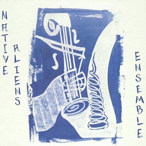 Native Aliens Ensemble