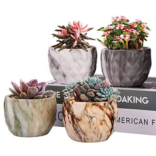 Richaa - Set di vasi per piante grasse in ceramica, per piante grasse e piante grasse in ceramica, con foro di drenaggio e vassoio per decorazione interna ed esterna