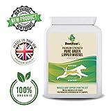 Best Paw Nutrition - Grünlippmuschelpulver für Hunde I Muschelextrakt Pulver für Gelenke I Grünlippmuschel für Hunde, Katzen & Pferde - 90 Kapseln