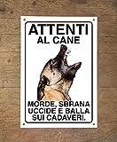 malionois pastore belga 2 attenti al cane morde sbrana uccide e balla sui cadaveri (15x20)