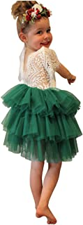 Toddler Party Dress Tulle Tiered Backless A-line Lace Tutu Princess Flower Girl Dresses Kids