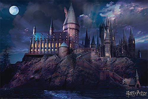 Harry Potter Hogwarts Movie Poster - Matte poster Frameless Gift 11 x 17 inch(28cm x 43cm)*IT-00018
