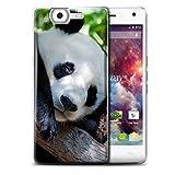 Hülle Für Wiko Highway 4G Wilde Tiere Pandabär Design