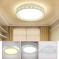 シーリングライト LEDシーリングライトバードネストラウンドランプ居間の寝室のキッチンTT-ベスト (Body Color : White light 18W)