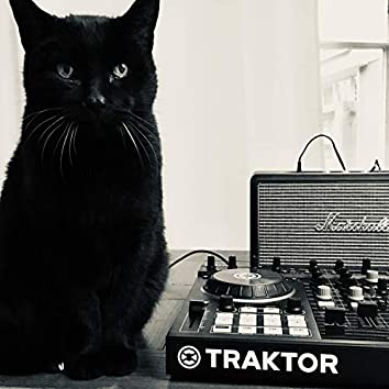 Traktor DJ Sequence