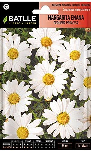 Semillas de Flores - Margarita enana pequeña princesa - Batlle