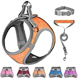 Small Dog Harness,Dog Collars,Harnesses & Leashes,Step in Dog Harness, Comfortable and Reflective Dog Vest Harness for Small Medium Puppy,Orange XS