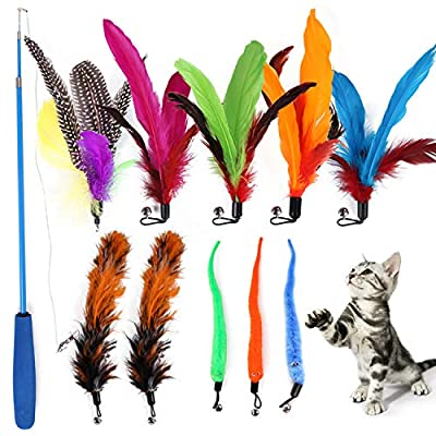 YYOJ 11PCS Cat Toys,Cat Feather Toys Interactive, Cats Retractable Teasing Stick Cat Toy with Bells and Feather Indoor Interaction with Cats (multicolor)