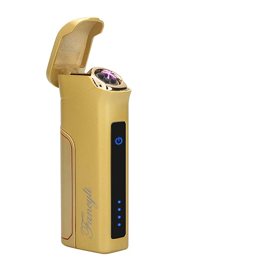 モーテルチャンバー締め切り電子ライター, Fancyli ターボライター USBライター ダブルアーク 電子ライター バッテリー交換可能 触感式点火 タッチセンサー 充電式 防風 軽量 薄型ガス オイル不要 持ちやすい