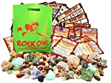 ROCK ON! Geology Game with Rock & Mineral Collection – Collect and Learn with STEM-based Educational Science Kit in Carrying Case - Amethyst, Rhodonite, Selenite Crystal, Sodalite and lots more