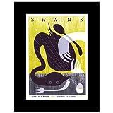 Music Ad World Swans – Groningen Niederlande 2010