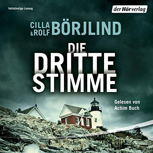 Die dritte Stimme audiobook cover art