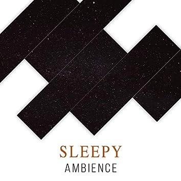 Sleepy Ambience, Vol. 4
