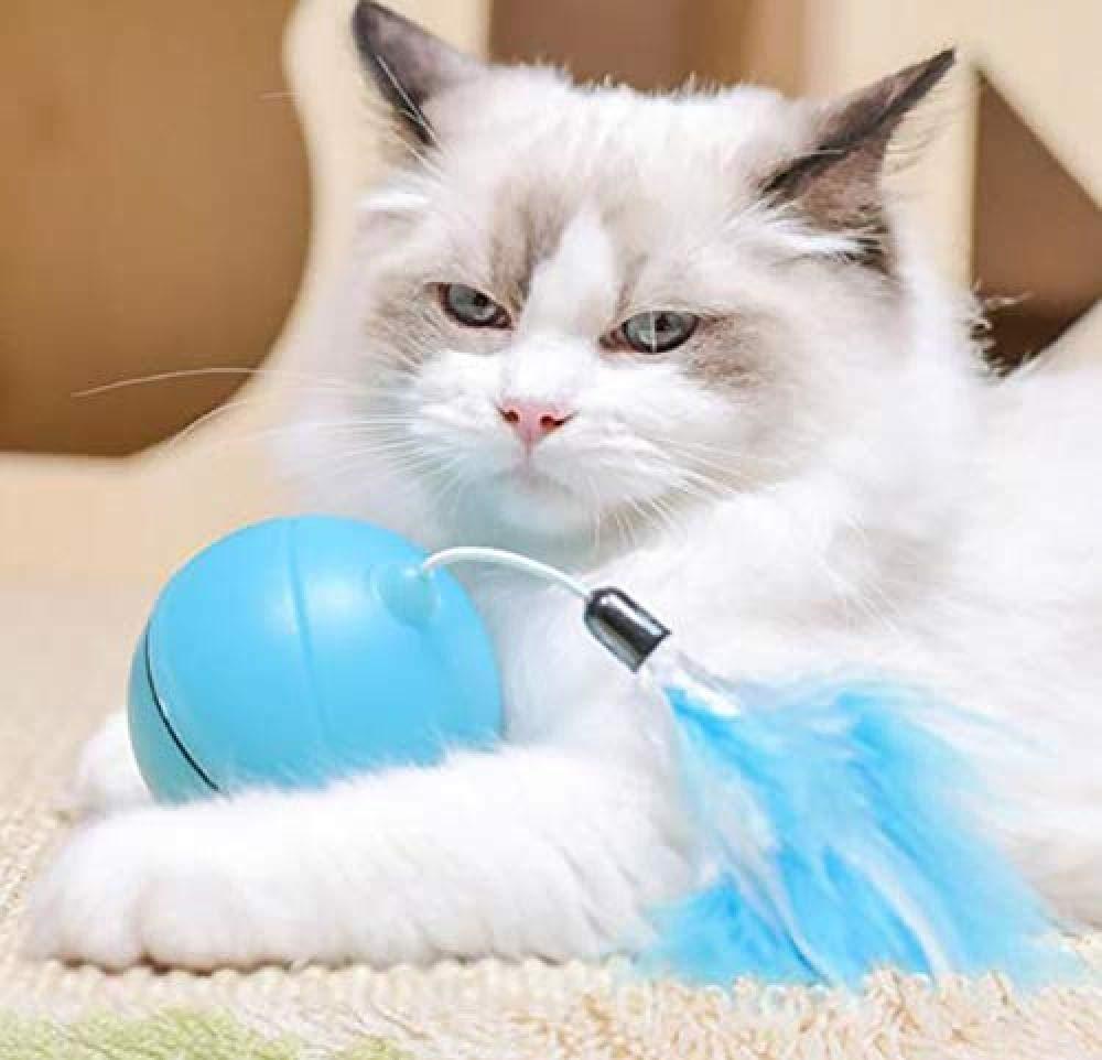 MJBABY Bola de Gato vibración láser eléctrica de plástico Bola de Juguete de Gato Juguete automático Pluma de Gato Bola Divertida: Amazon.es: Productos para mascotas