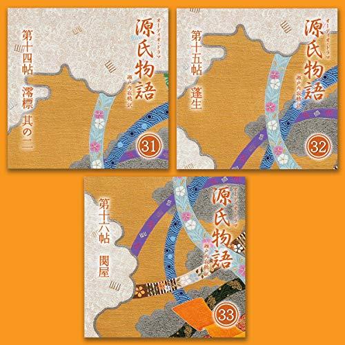 『源氏物語 瀬戸内寂聴 訳 3本セット(十一)』のカバーアート