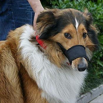 JYHY Muselière en nylon pour chien – Ajustement rapide réglable pour éviter de mordre les aboiements et de mâcher pour chiens de petite taille et moyenne Noir
