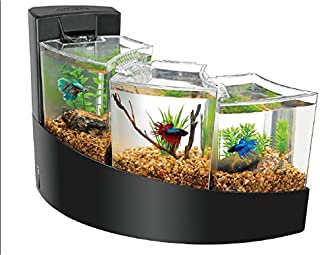 corner aquarium tanks for sale